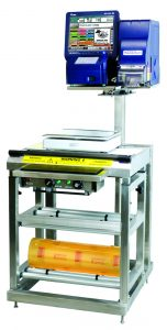 Prepack Scale & Wrapping Station - TSDPS5600M WS6000