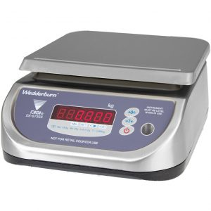 Checkweigher Scale